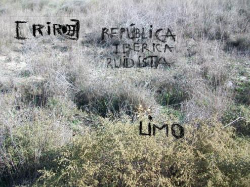 rir027_limo